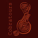 logo-cobratours